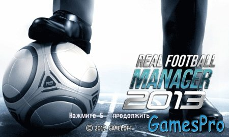 Real Football Manager 2013 (Java)